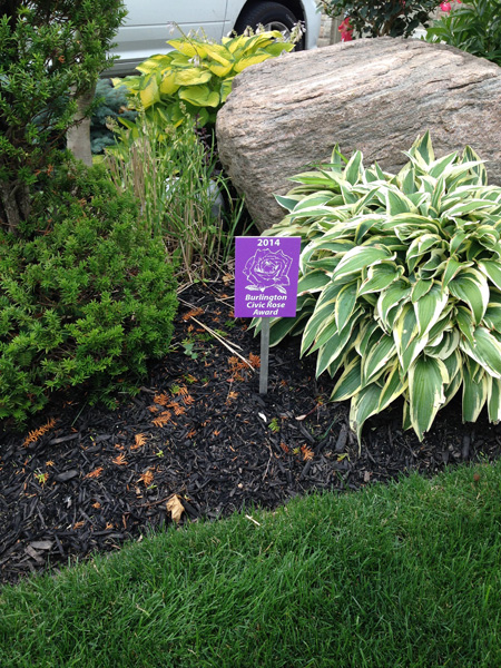 Lawn maintenance gallery burlington lawn care for Garden care maintenance