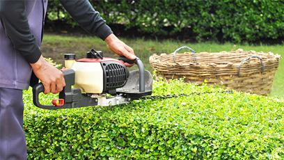 commercial lawn care burlington service